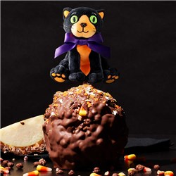 trick-or-treat-candy-scaredy-cat-jumbo-caramel-apple-gift-199-MCTOT-19F01